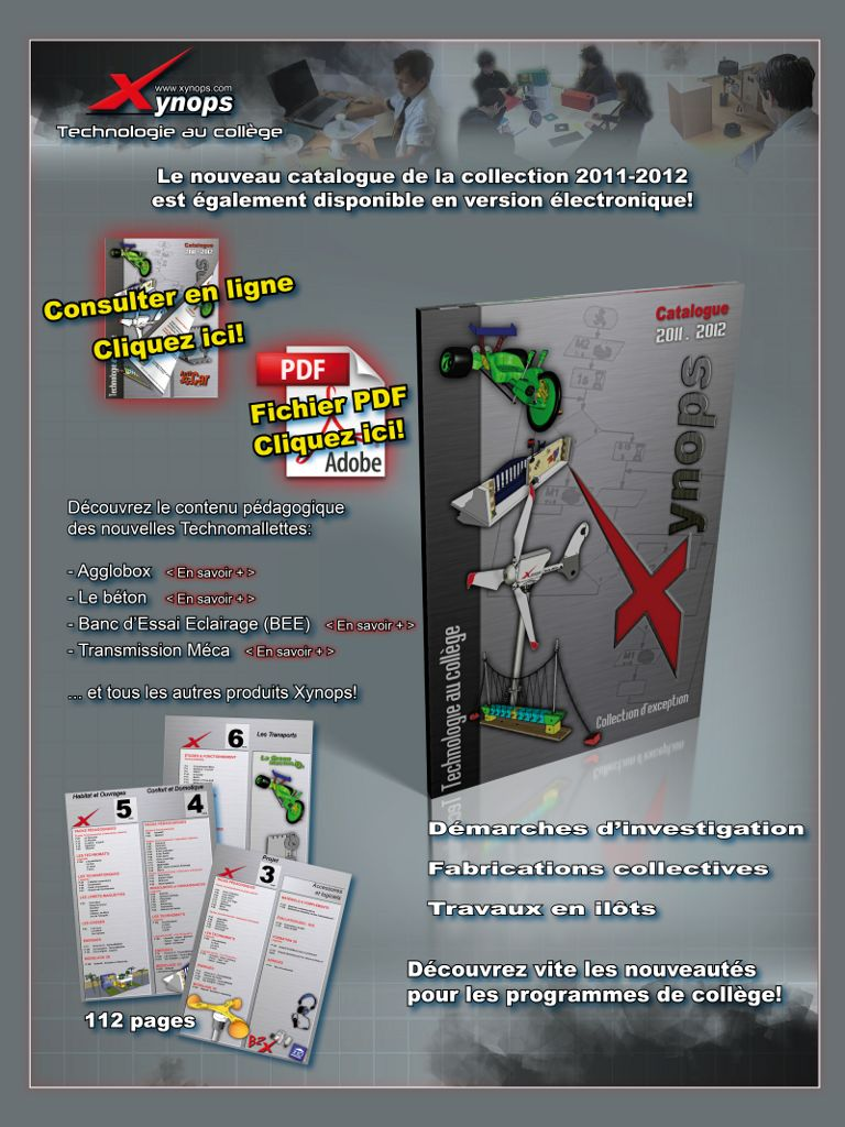 2011 - Mailing Xynops (Indesign)